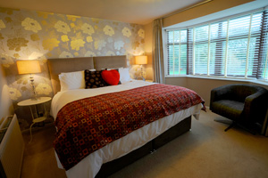 Sleeping Bay Bed and Breakfast Room Photos